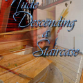 """Nude Descending a Staircase"" by Joyce Richardson"