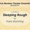 "Brick Monkey ""Sleeping Rough"" poster"