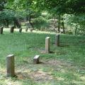 The Ridges Cemetery (courtesy: athensconservancy.org)