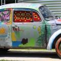 Fur Peace VW Bug