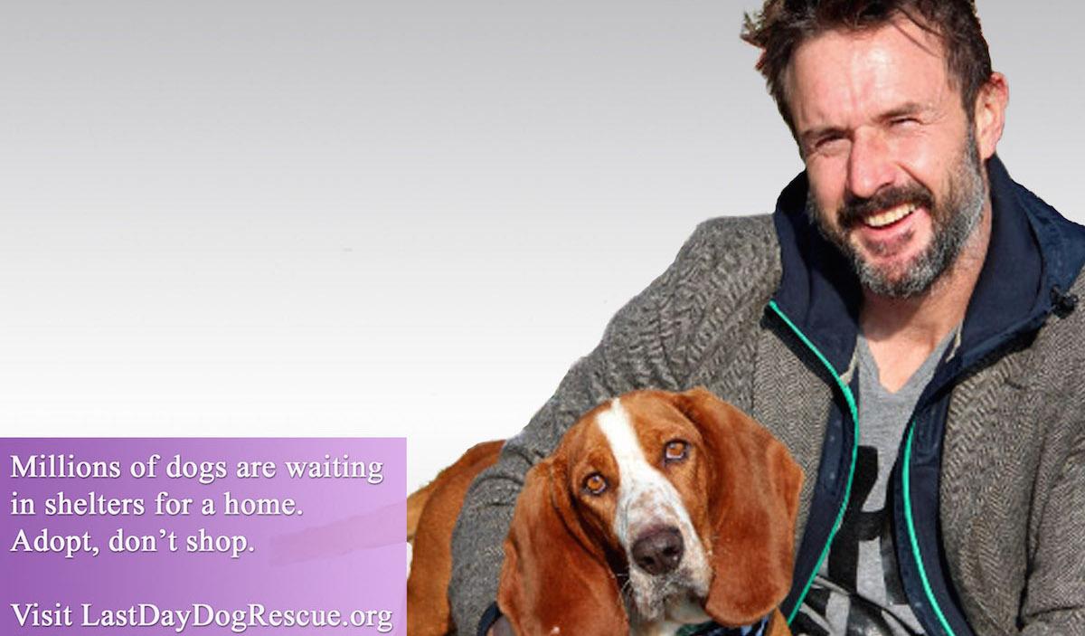 David Arquette with bassett hound
