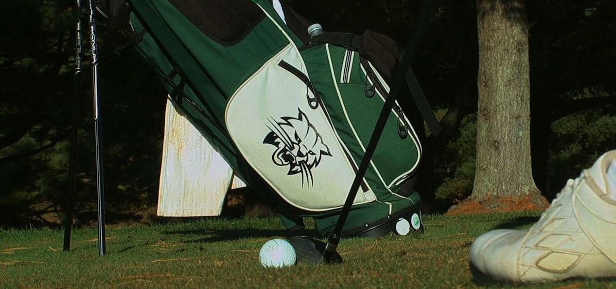 Golf bag and shoe