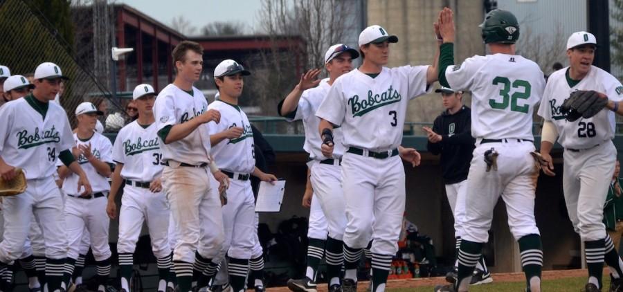 Ohio baseball team high five bear dugout
