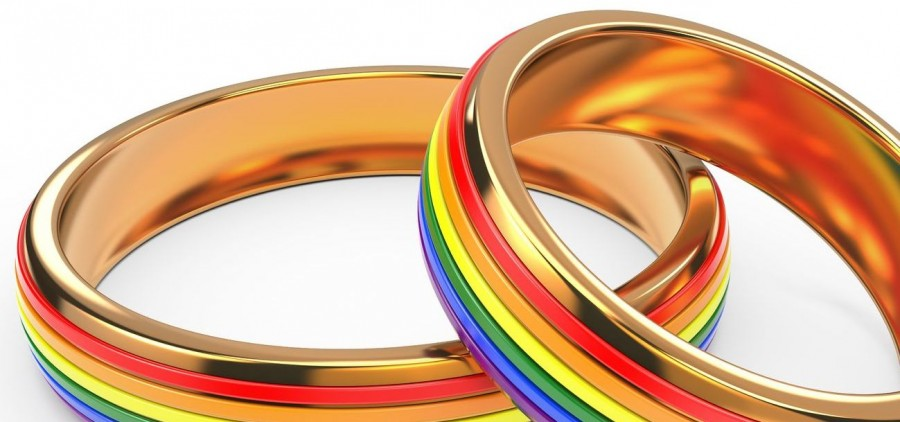 gay marriage FEATURE