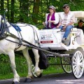 Horse carriage ride at Punderson Manor State Park Lodge