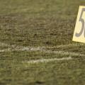 football field FEATURE