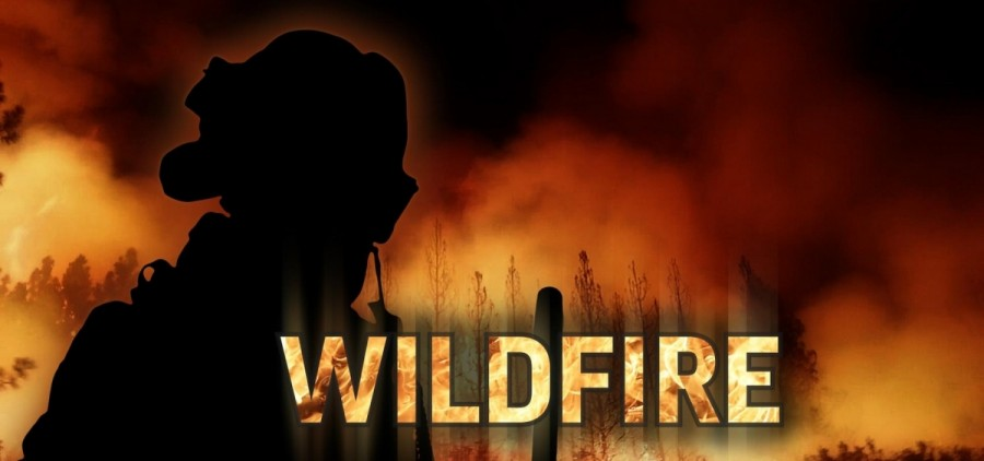 wildfire FEATURE