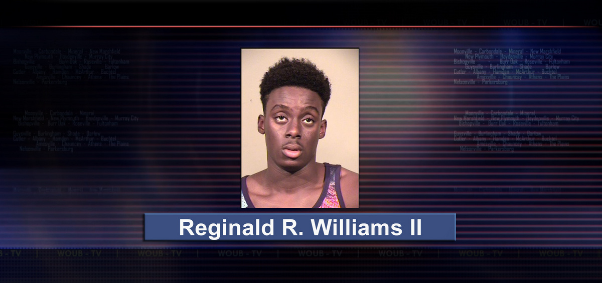 Reggie R Williams mug shot