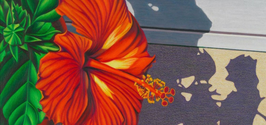 "Diane Belfiglio, ""Sunlight on Scarlet I,"" 2010, oil pastel on paper (artsohio.com)"
