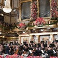Vienna Philharmonic. Photo credit: Terry Linke