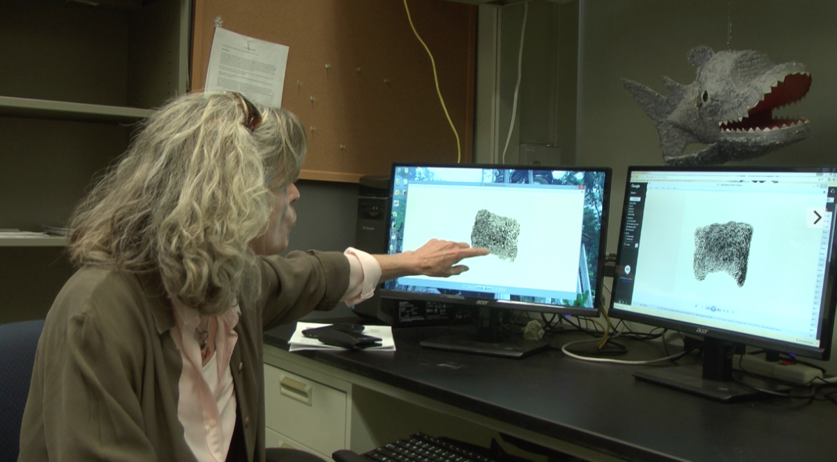 Dr. Molly Morris compares two fingerprints