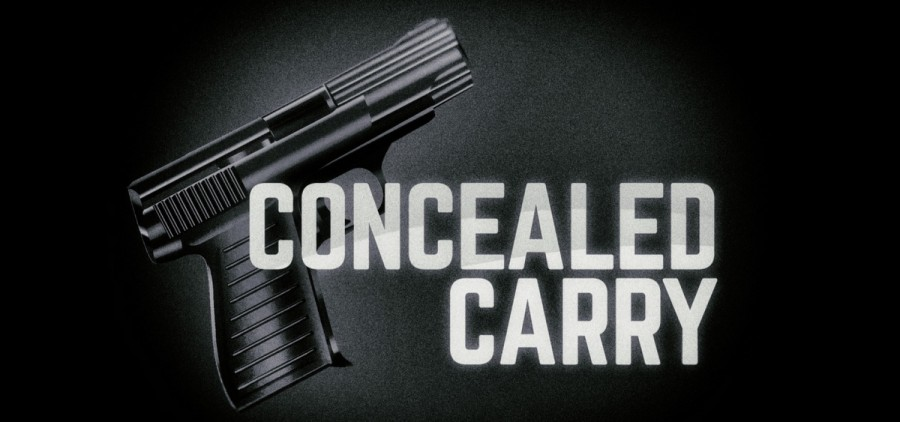 concealed carry feature