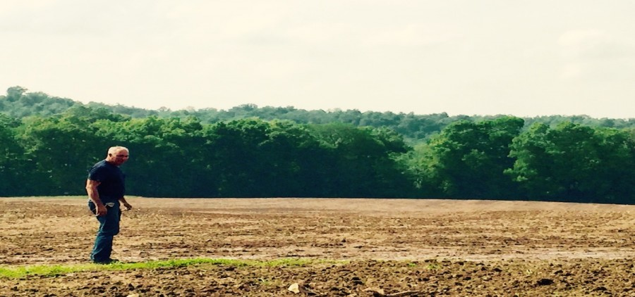 Christian Co., Kentucky, farmer Kendall Clark is betting big on these fields sown with hemp.