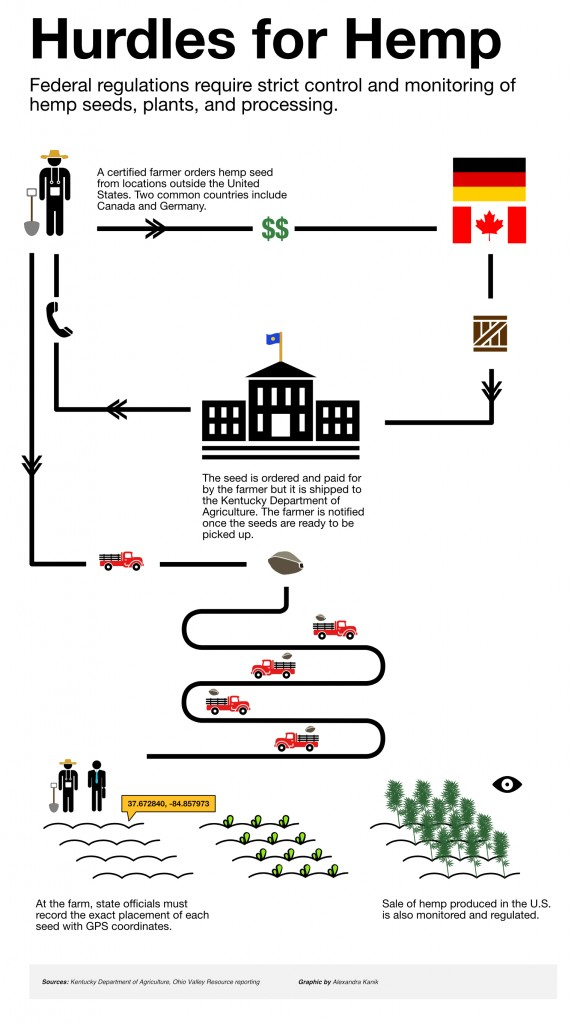 hemp-seed-timeline-v4