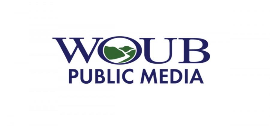 womb public media