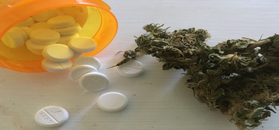 pills and pot featured image