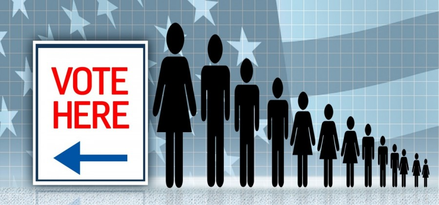 voting election feature