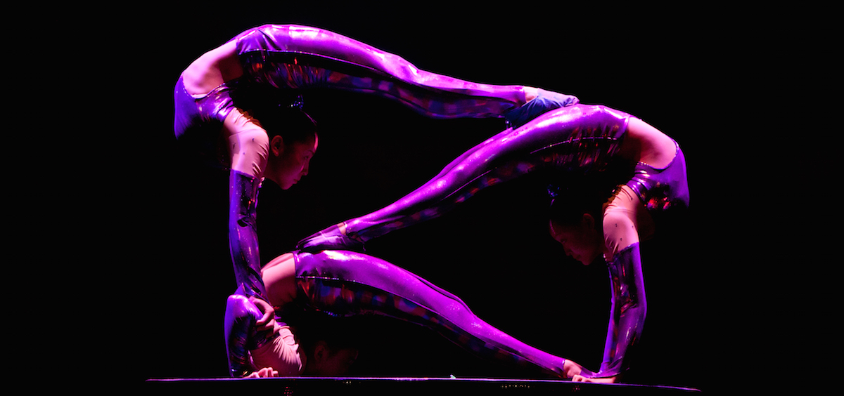 The award-winning Gold Dragon Acrobats are coming to the Peoples Bank Theatre the last week of January. (Amitava Sarkar)