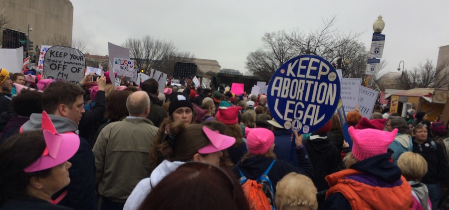 A snapshot of the peaceful protest that took place in Washington, D.C., on Saturday, Jan. 21. (Emily Votaw/WOUB)