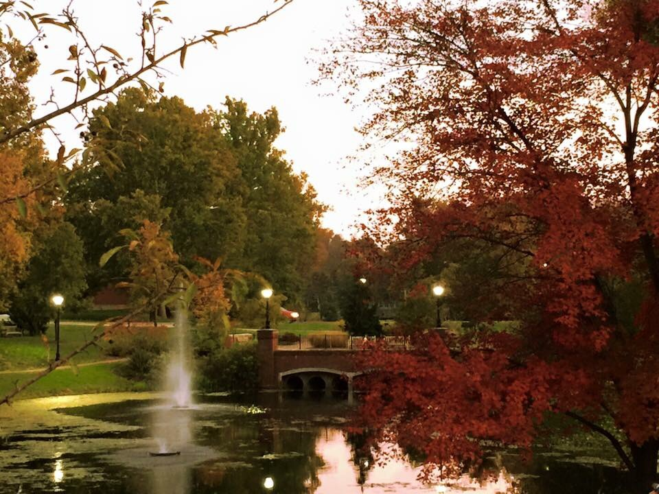 """""""Fall Colors at OU"""" by Rebecca Choi. (Submitted)"""