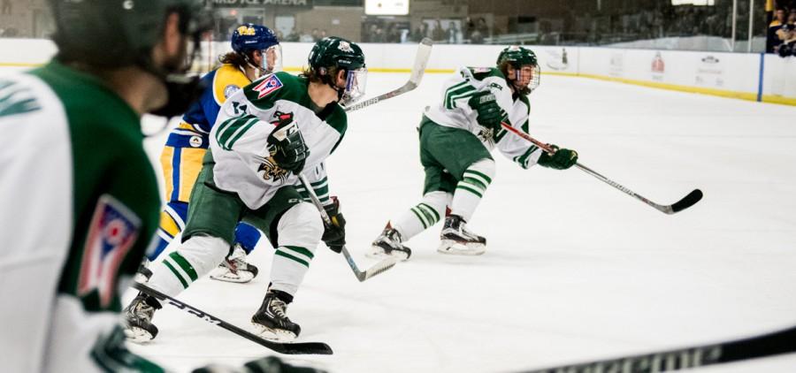 Hockey-8