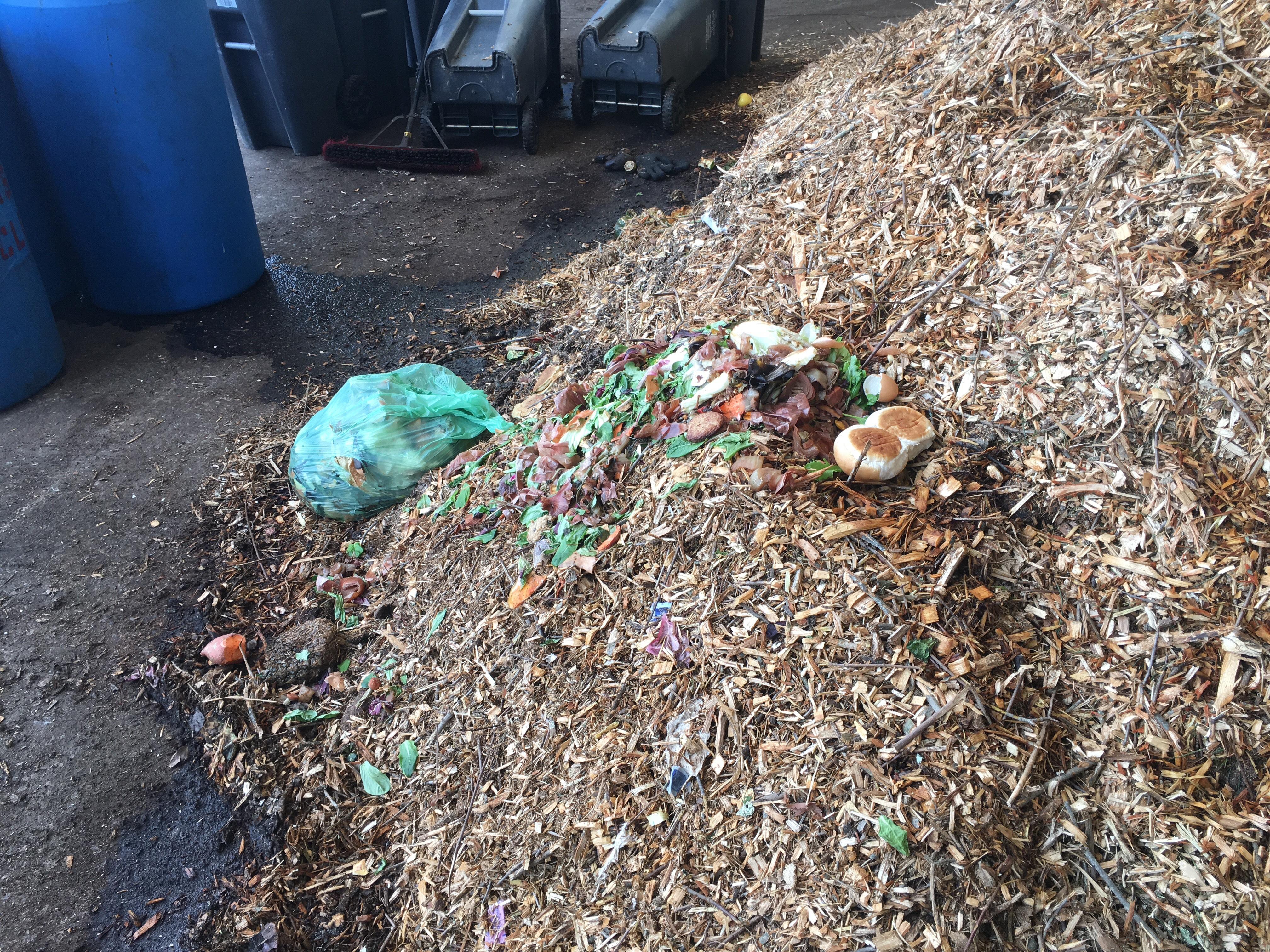 Anything from hamburger buns to rotten pineapples can be composted.