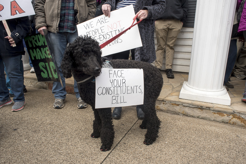 A dog wears a sign in protest of Congressman Bill Johnson in Marietta, Ohio on Febuary 25, 2017. (Camille Fine/WOUB)