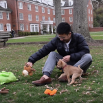 Henry Pham plays with his dog, Theodore.