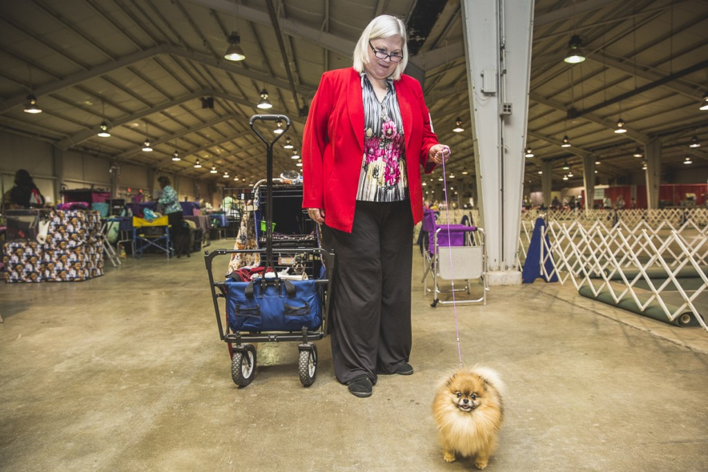 Sarah Scott, of Medina, Ohio, poses with her Pomeranian, a Bronze Grand Champion. (Erin Clark/WOUB)