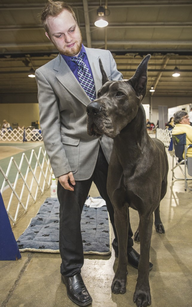 Thomas Highland, of Gahanna, Ohio, poses with his 18-month-old Great Dane, Lincoln. Lincoln currently weighs 160 Pounds and weighed 25 pounds when he was born. (Erin Clark/WOUB)