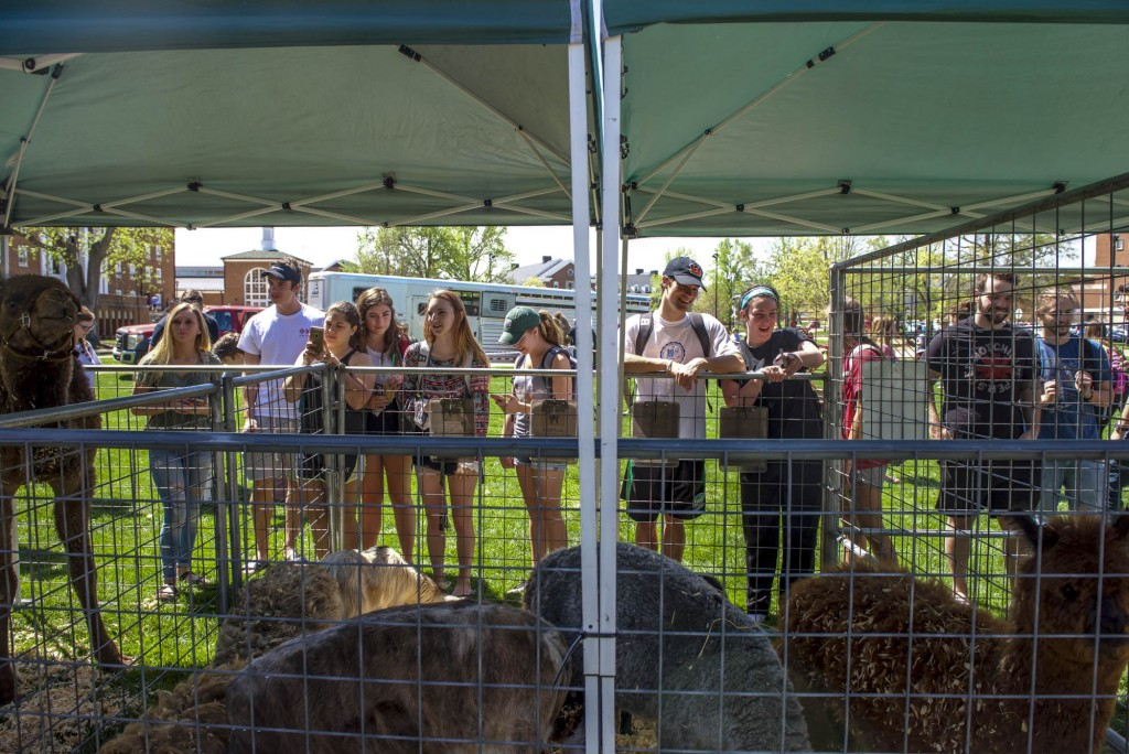 Students at Ohio University enjoying the animals at Zoo To You event held by Jungle Zoo Island at Ohio University on Tuesday, April 18, 2017. (Daniel Linhart/WOUB)