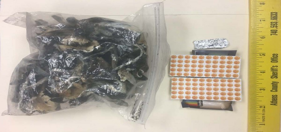 'Shrooms and LSD seized during traffic stop (ACMCU)
