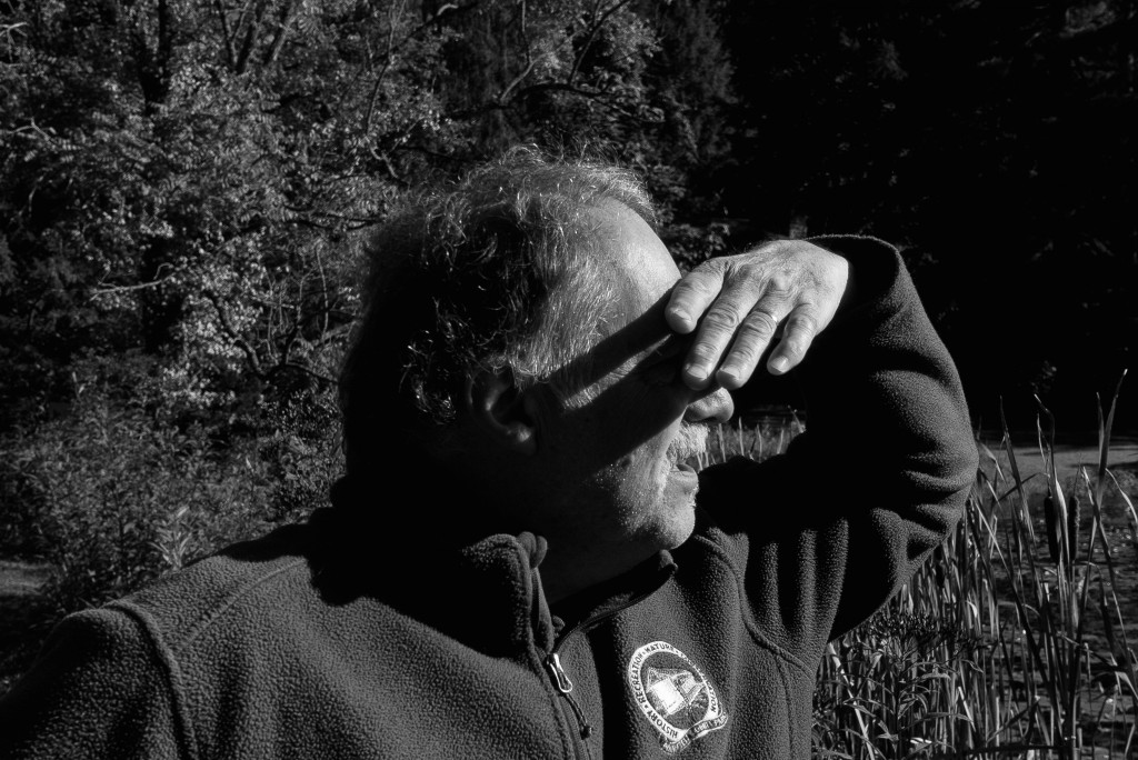 Tom Shisler, the site manager/naturalist at Wahkeena Nature Preserve, looks over the pond for a bird that flew right over his head. (Michael Swensen/WOUB)