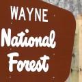Wayne National Forest sign