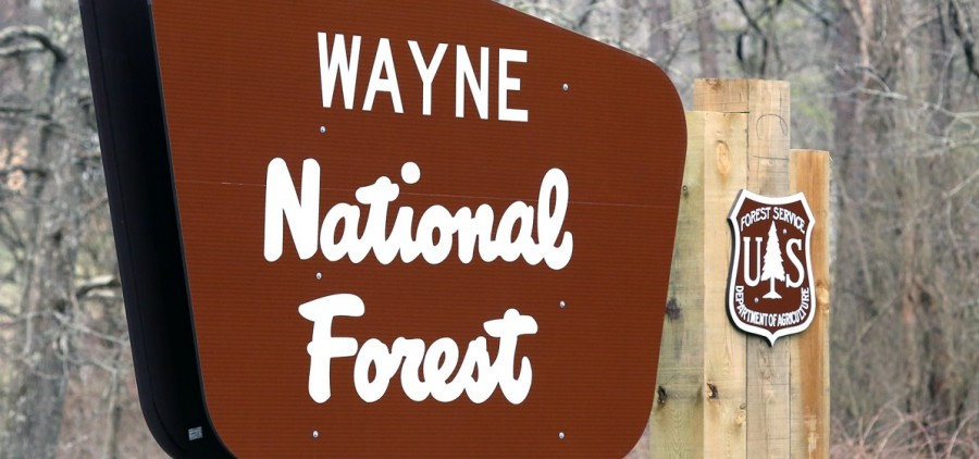 Wayne National Forest sign