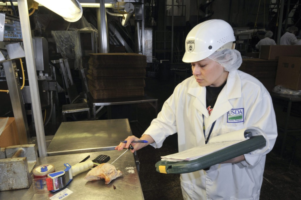 A USDA inspector at work in a Tyson Foods poultry processing plant. (USDA/ Bob Nichols)