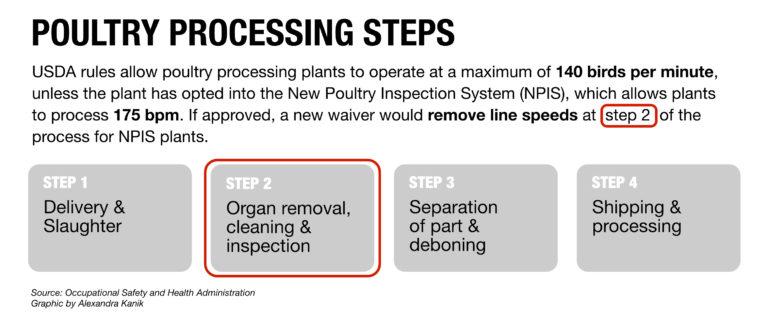 poultry-processing-steps-v3-768x331