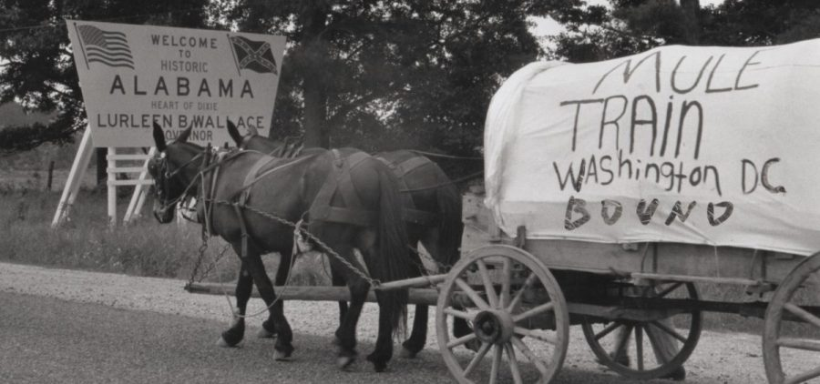 As the Mule Train crossed the first state line into Alabama, participants celebrated having made it through Mississippi safely.