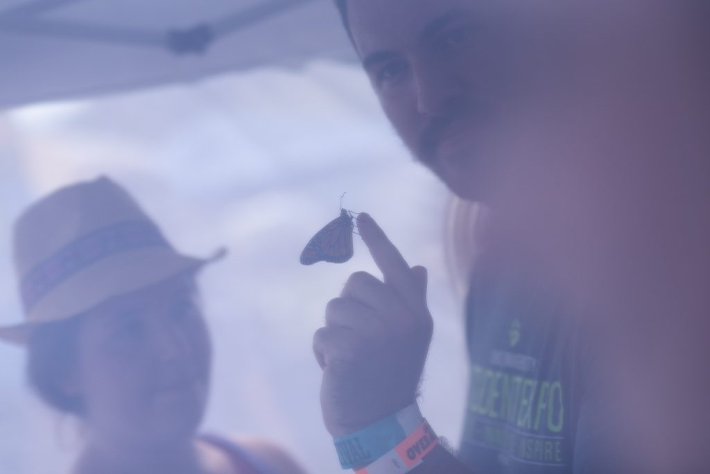 Luke Welch holds a monarch butterfly next to Laura Diacko in the Monarch Tent on Saturday, September 15, 2018. (Nickolas Oatley/WOUB)