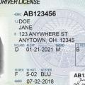 Ohio Drivers Licesne