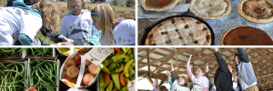 Four pictures depict previous pie day activities