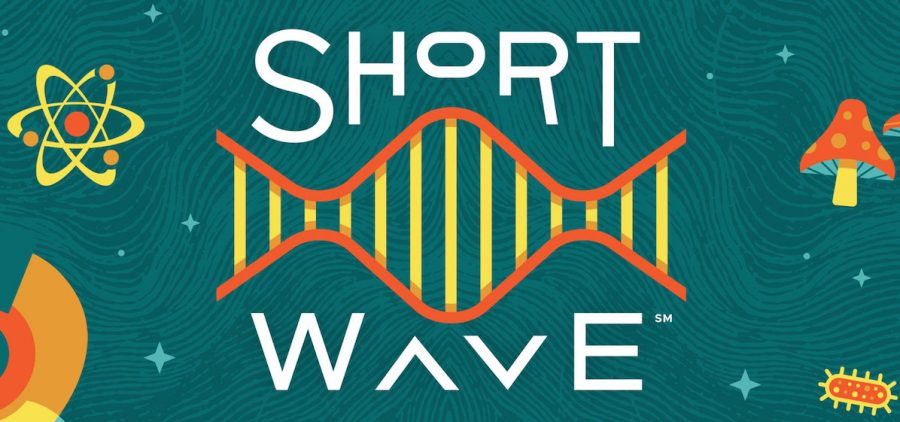 Short Wave, NPR's new daily science podcast, starts October 15th.