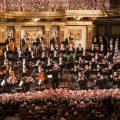 The Vienna Philharmonic on stage