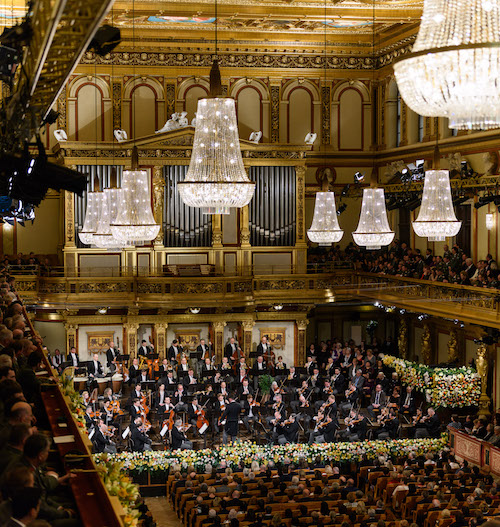 The Vienna Philharmonic on stage
