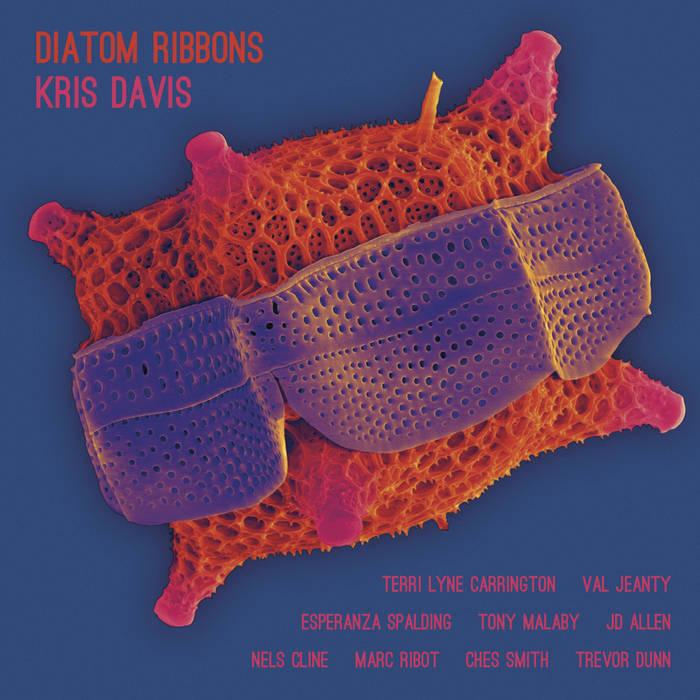 Kris Davis, Diatom Ribbons