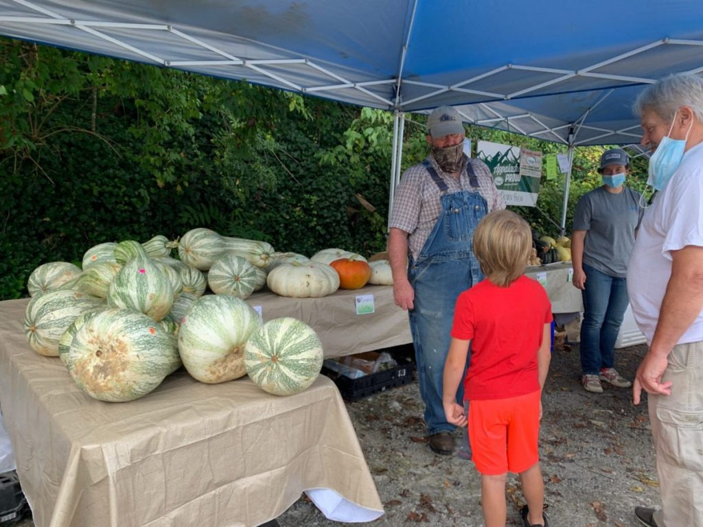 Pumpkins and other produce sit on the tables at the Letcher County Farmers Market in September.