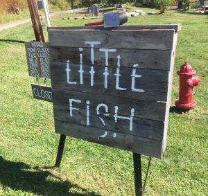 Little Fish Brewing Company Sign