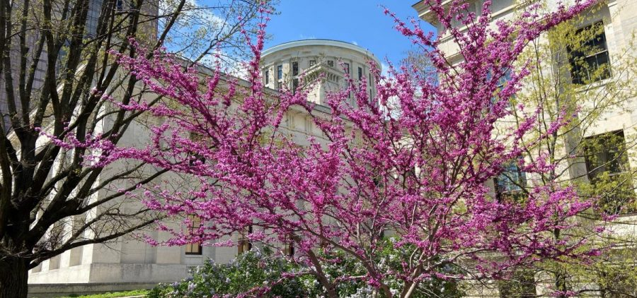 The Ohio Statehouse in Spring