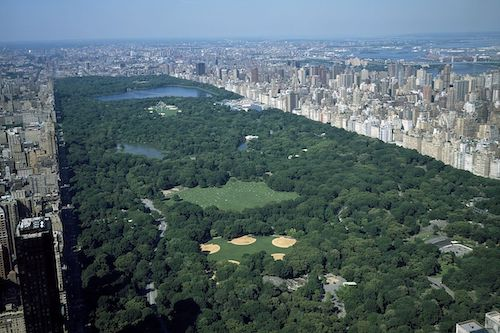 ariel view of Central Park, NYC